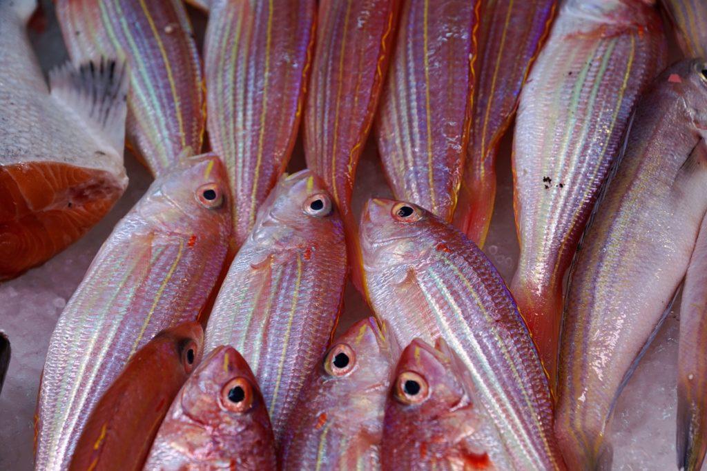 pesce fresco al mercato